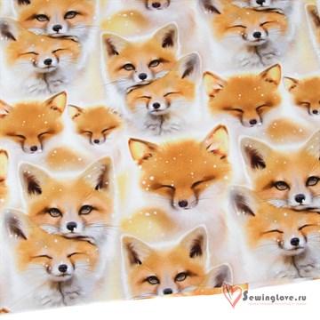 Футер Рыжая лисичка
