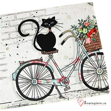 Кулир Кот на велосипеде, купон