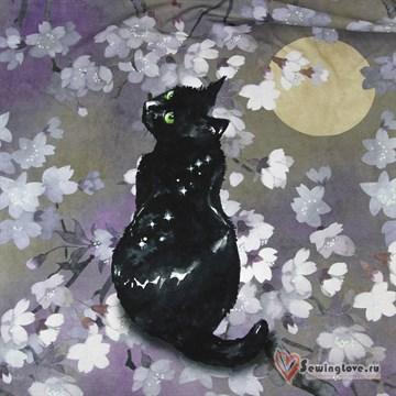 Кулир Чёрный кот, купон